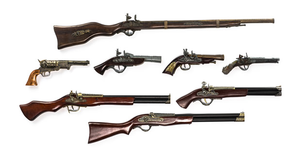 image of firearms collection
